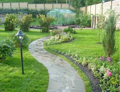 Пример посевного газона
