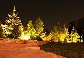 Подсветка деревьев снизу