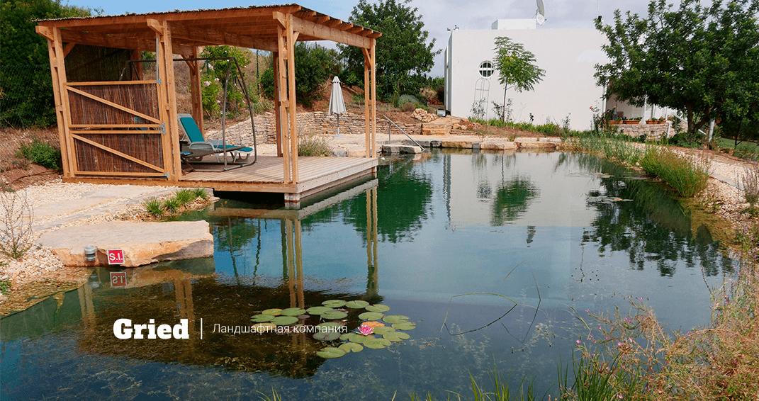 искуственный пруд для купания на даче фото